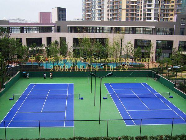 武汉丙烯suan网球场及围网灯光